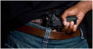 Concealed Weapons Case