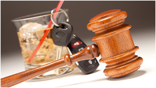 Michigan Drug and Sobriety Court Programs
